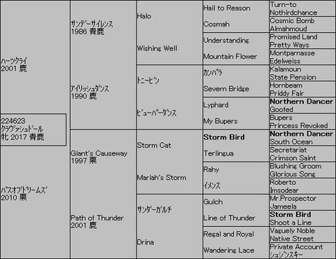 クラヴァシュドール5代血統表