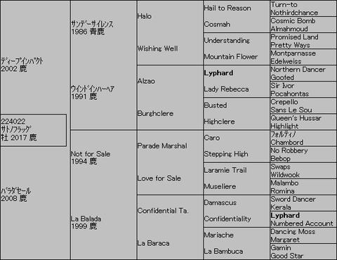 サトノフラッグ5代血統表