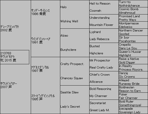 サウンドキアラ5代血統表