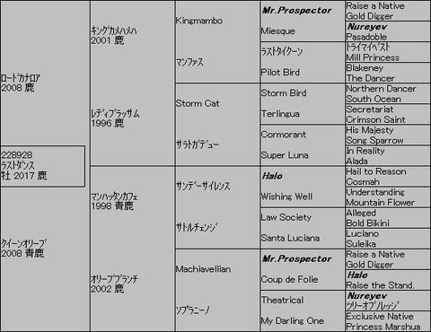 ラストダンス5代血統表