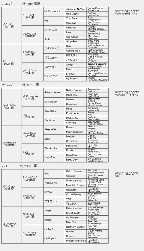 ノンコノユメ6代血統表