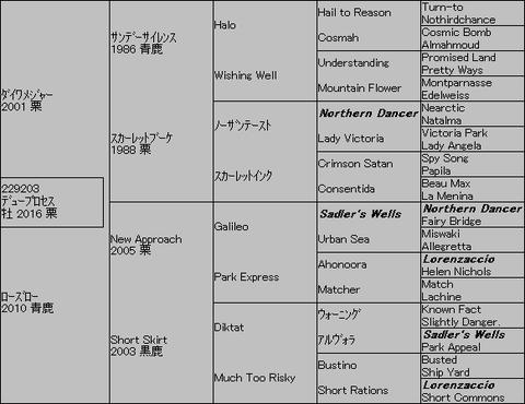 デュープロセス5代血統表