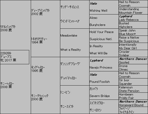 デュープス5代血統表