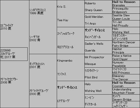 スカイグルーヴ5代血統表