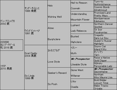 カレンブーケドール5代血統表
