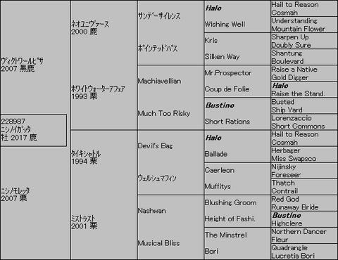 ニシノイガッタ5代血統表