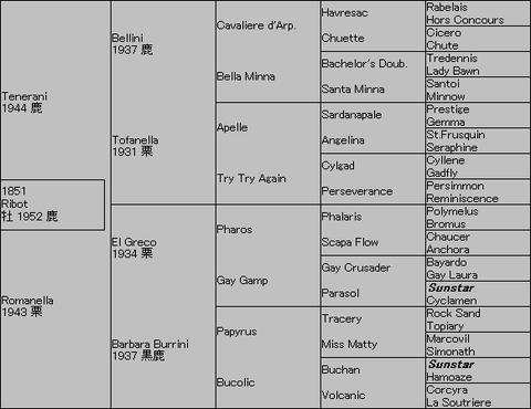 Ribot 5代血統表