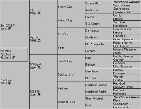 ニシノルックミー5代血統表