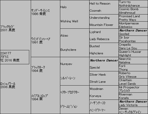 アガラス5代血統表