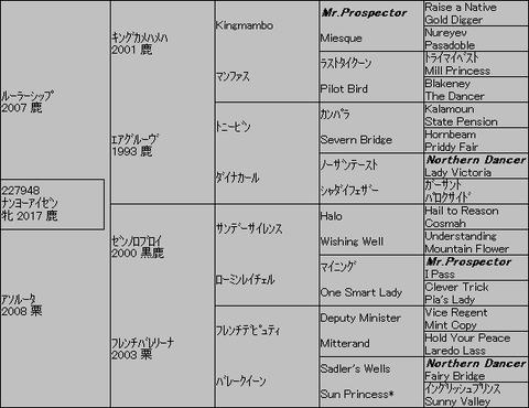 ナンヨーアイゼン5代血統表