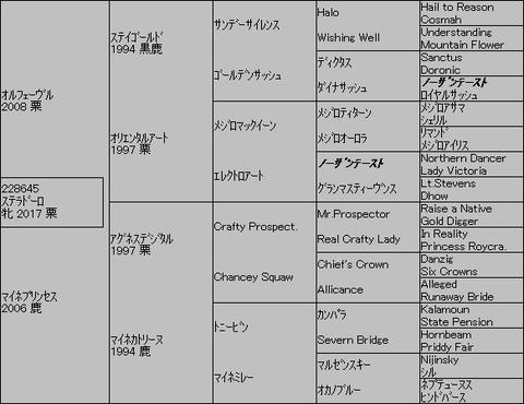 ステラドーロ5代血統表