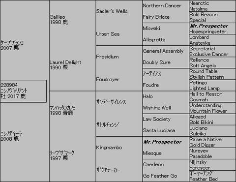 ニシノヴァリアント5代血統表