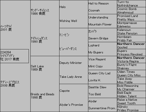 マイラプソディ5代血統表