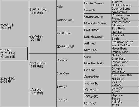 エントリーチケット5代血統表