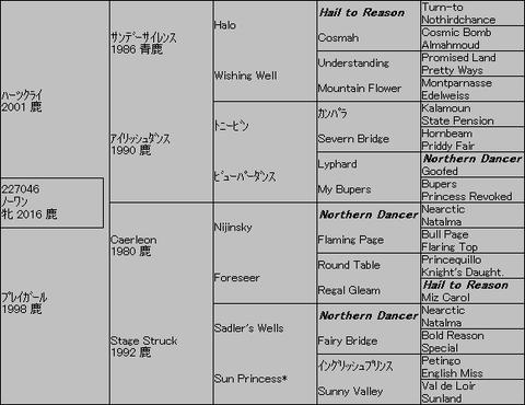 ノーワン5代血統表