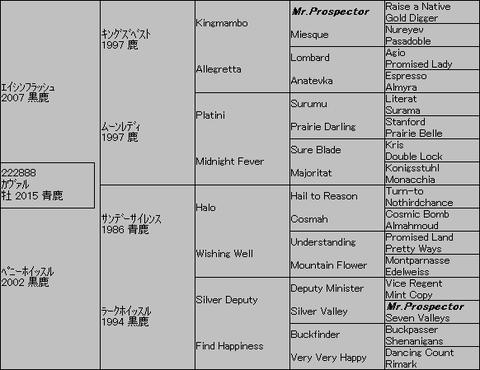 カヴァル5代血統表