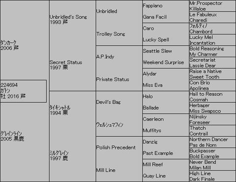 ガトン5代血統表