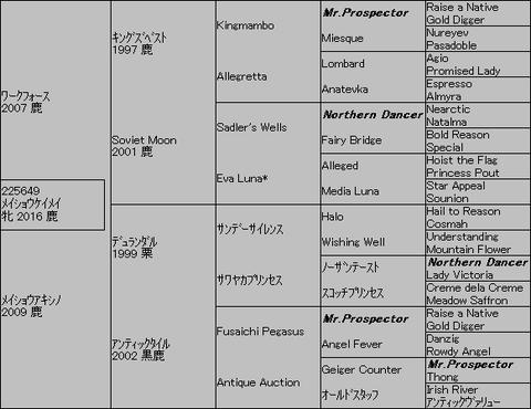 メイショウケイメイ5代血統表