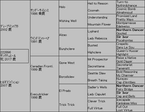 サンクテュエール5代血統表