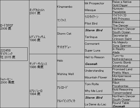 ダイアトニック5代血統表