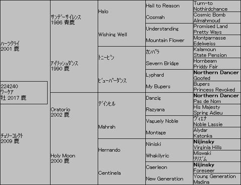 ワーケア5代血統表