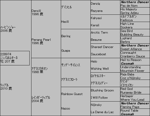 ニシノコルレオーネ5代血統表
