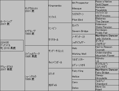 ディアンドル5代血統表