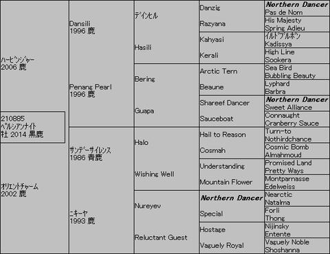 ペルシアンナイト5代血統表