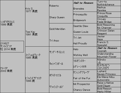 サンライズソア5代血統表