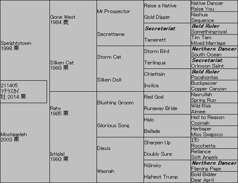 マテラスカイ5代血統表