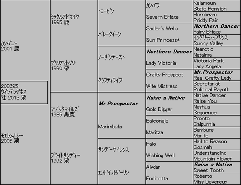 ウインテンダネス5代血統表
