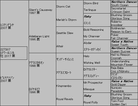 エトワールミノル5代血統表