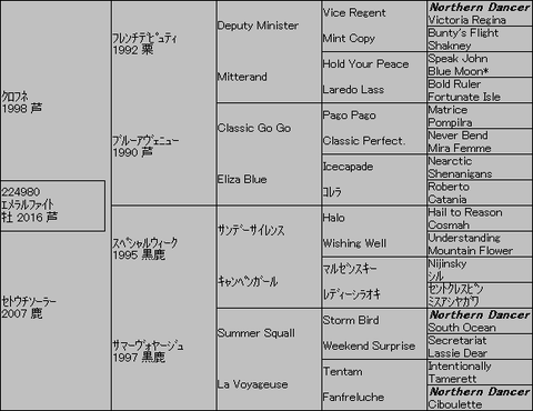 エメラルファイト5代血統表