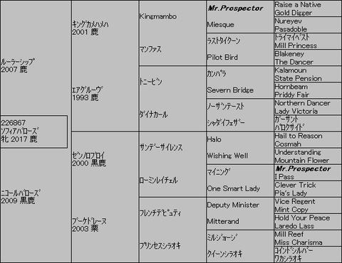 ソフィアバローズ5代血統表
