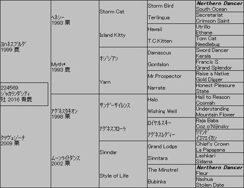 ジャカランダシティ5代血統表