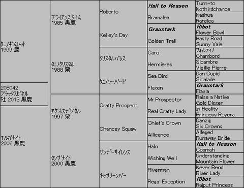 ブラックスピネル5代血統表