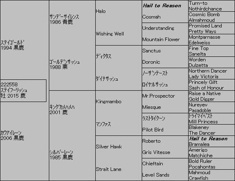 ステイフーリッシュ5代血統表