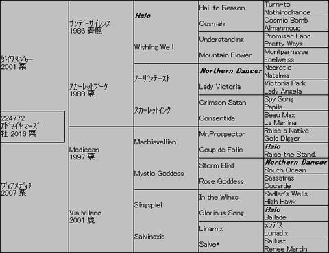 アドマイヤマーズ5代血統表