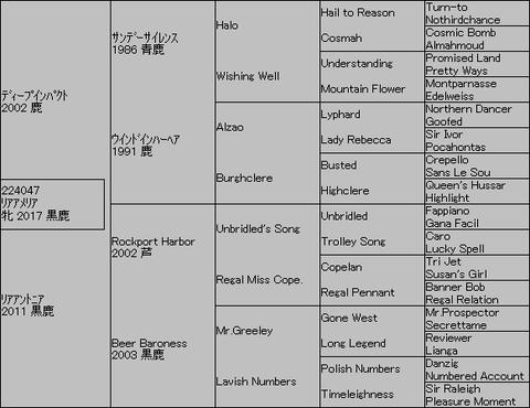 リアアメリア5代血統表