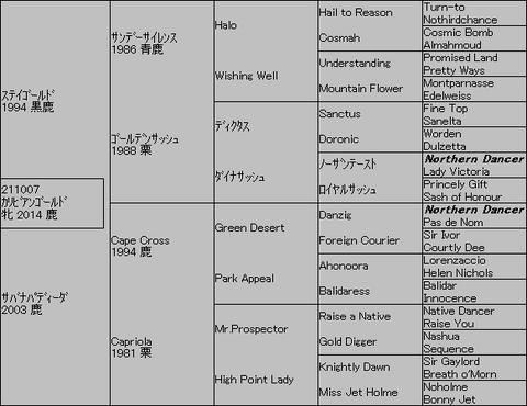 カリビアンゴールド5代血統表