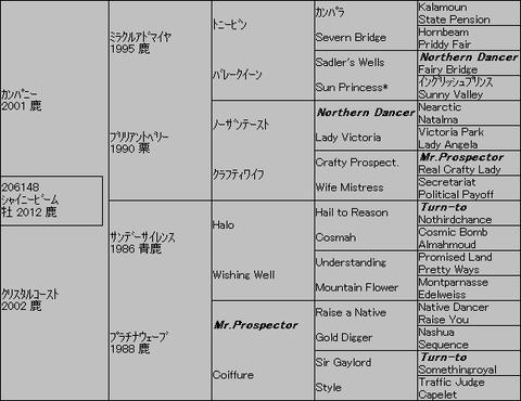 シャイニービーム5代血統表