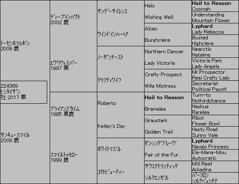 ヒシタイザン5代血統表
