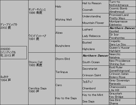 エイシンティンクル5代血統表
