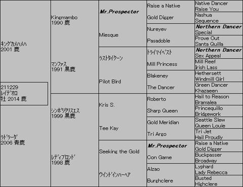 レイデオロ5代血統表