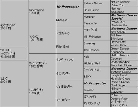 レッツゴードンキ5代血統表