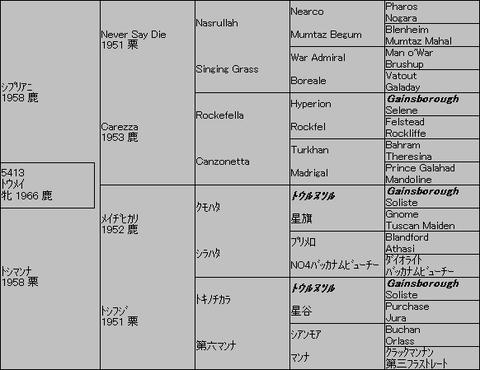 トウメイ5代血統表