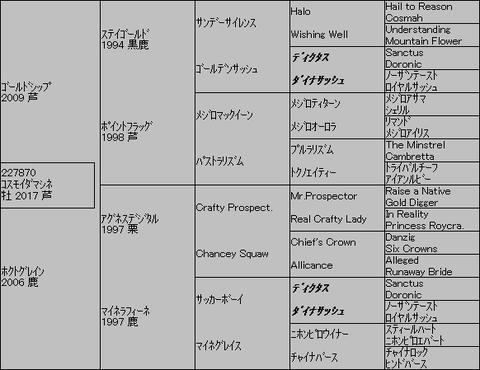 コスモイダマシネ5代血統表