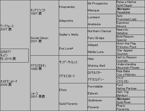 キュアン5代血統表