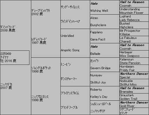 ナイママ5代血統表