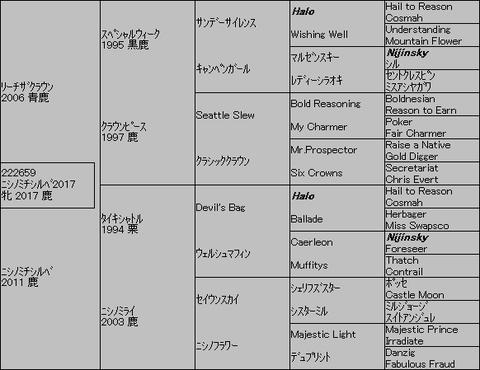 ニシノミチシルベ20175代血統表